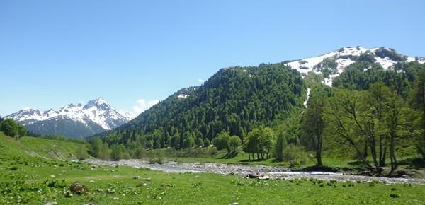 Альпийские луга в Абхазии