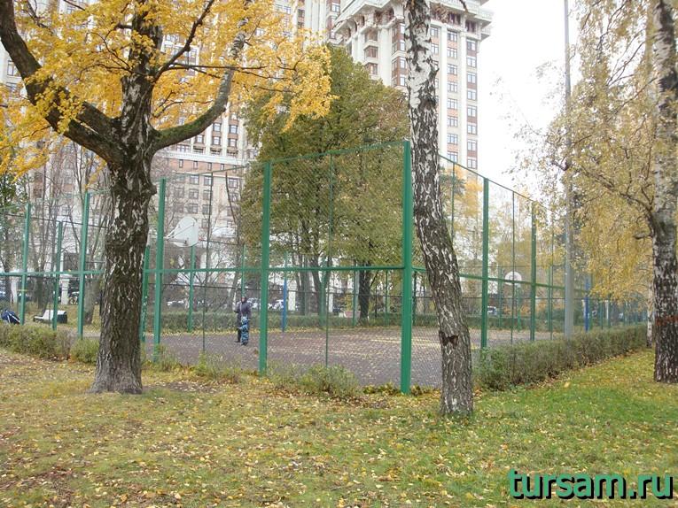 Баскетбольная площадка в Чапаевском парке