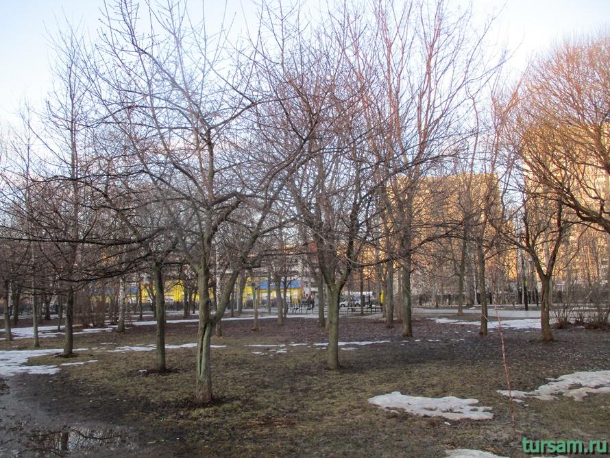 Братиславский парк в Москве-12