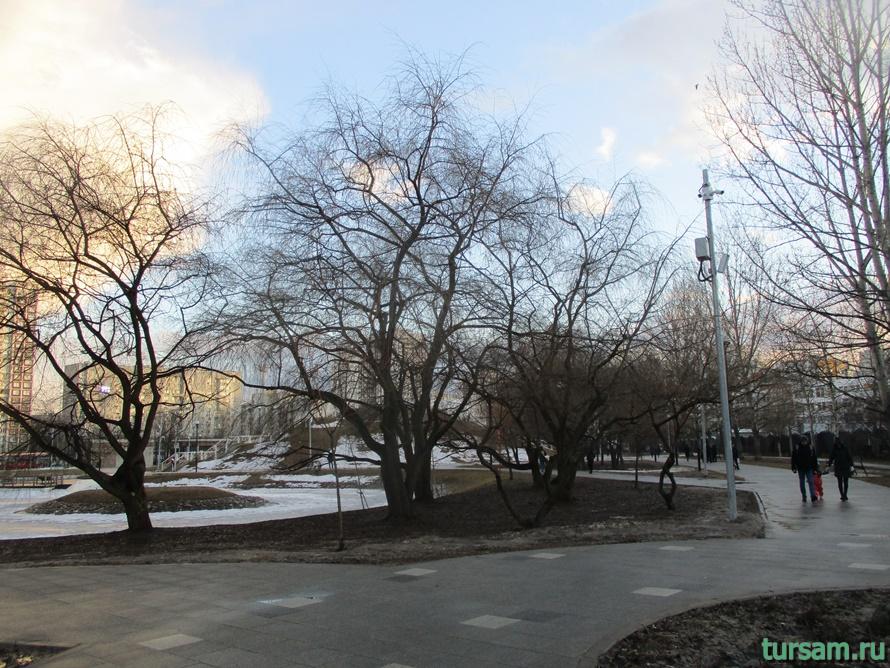 Братиславский парк в Москве-6
