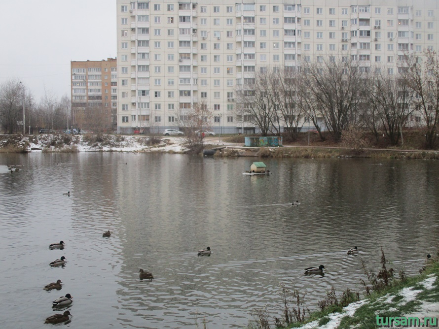 Чкаловский парк в Щелково-4