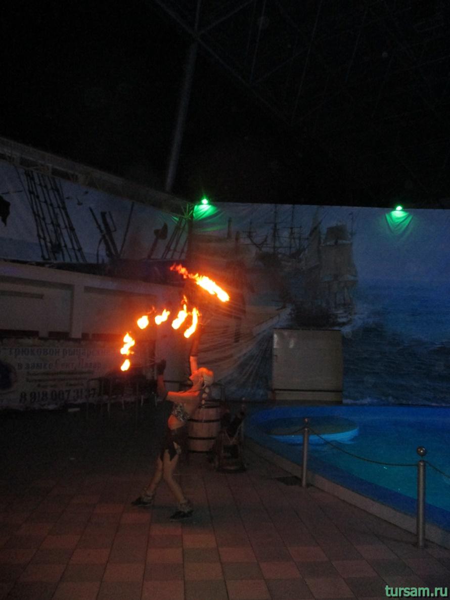 Дельфинарий Морская Звезда в Лазаревском-5