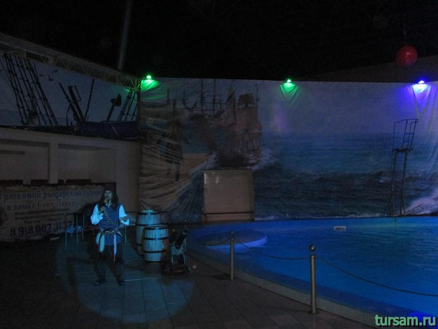 Дельфинарий Морская Звезда в Лазаревском-6
