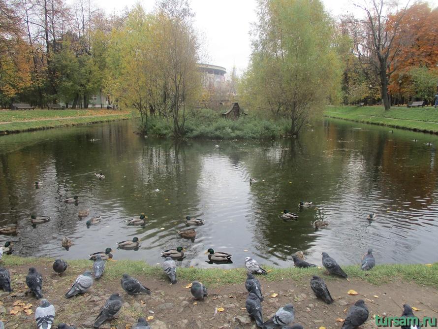 Екатерининский парк-4