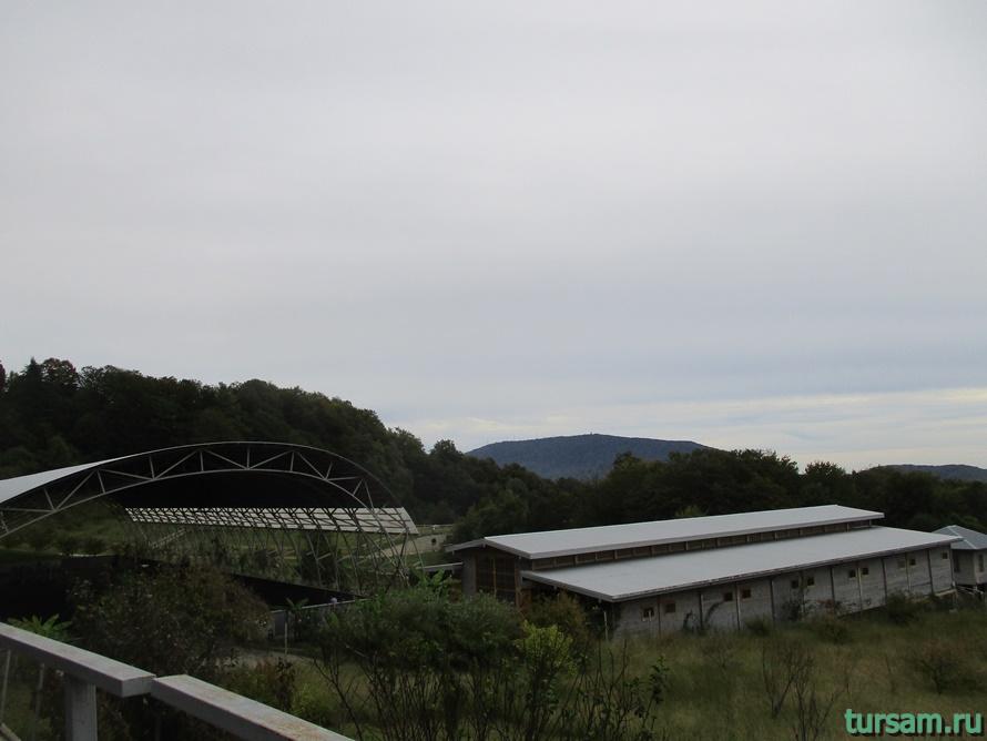 Ферма Экзархо в Сочи-6