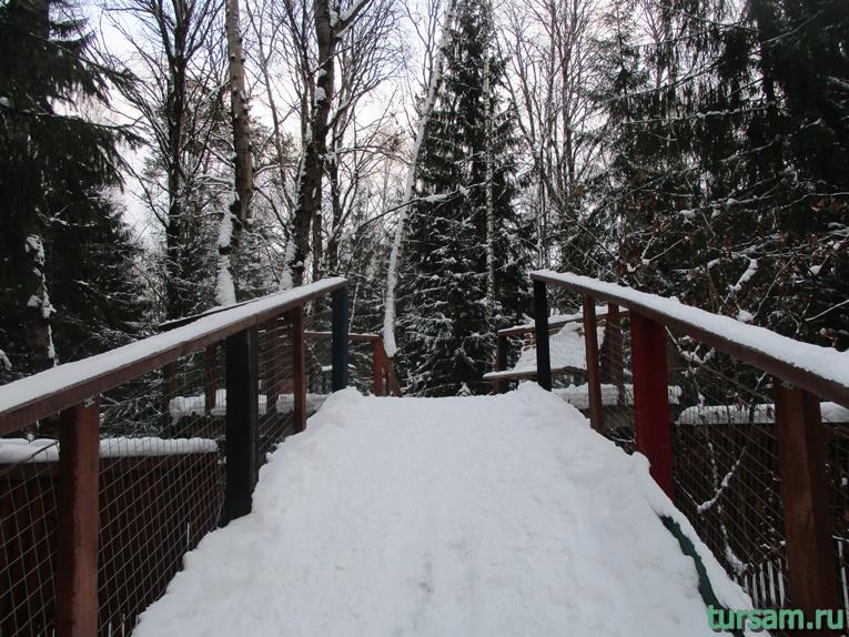 "Фото лесного лабиринта ""Дебри""-4"