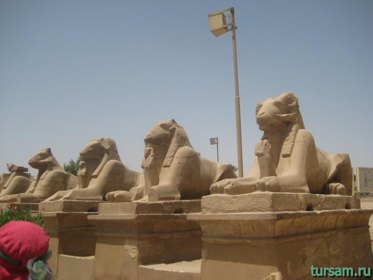 Фото Луксора в Египте-14