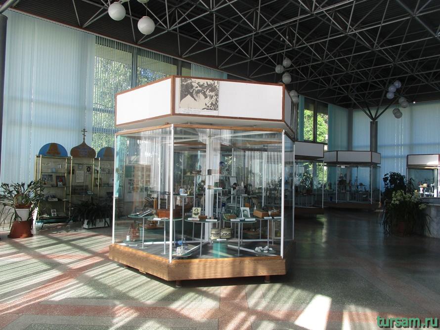 Фото музея Дерево Дружбы в Сочи-1
