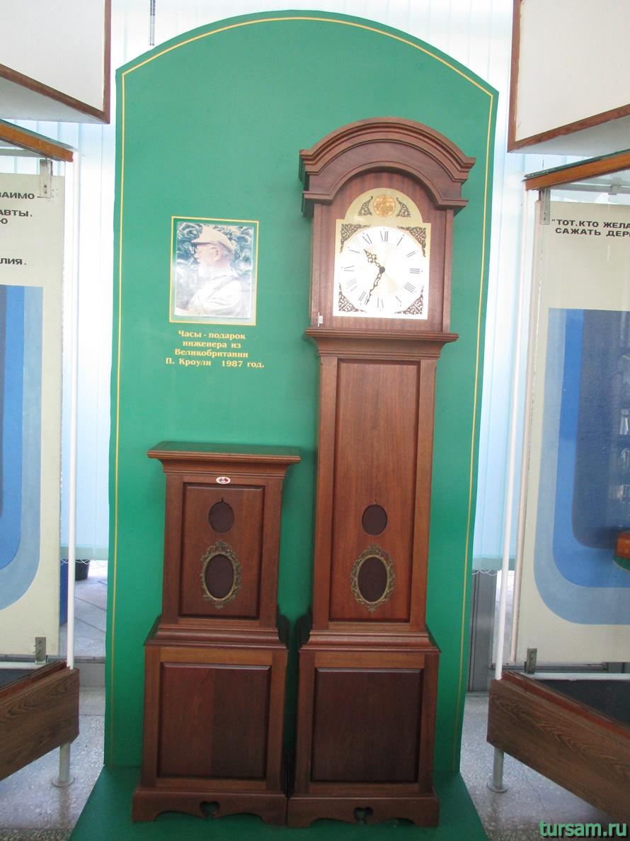 Фото музея Дерево Дружбы в Сочи-12