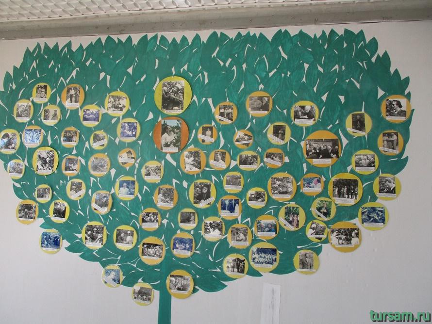Фото музея Дерево Дружбы в Сочи-22