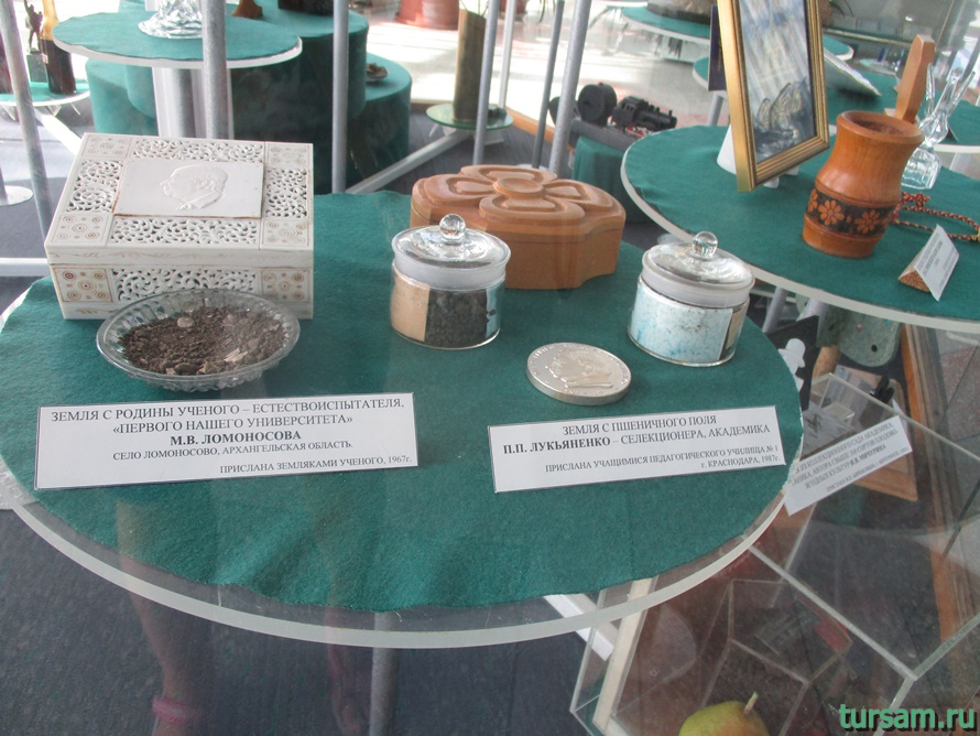 Фото музея Дерево Дружбы в Сочи-5