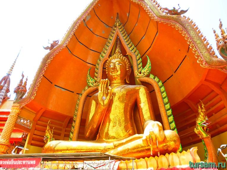 Фото на территории храма Тигра №3