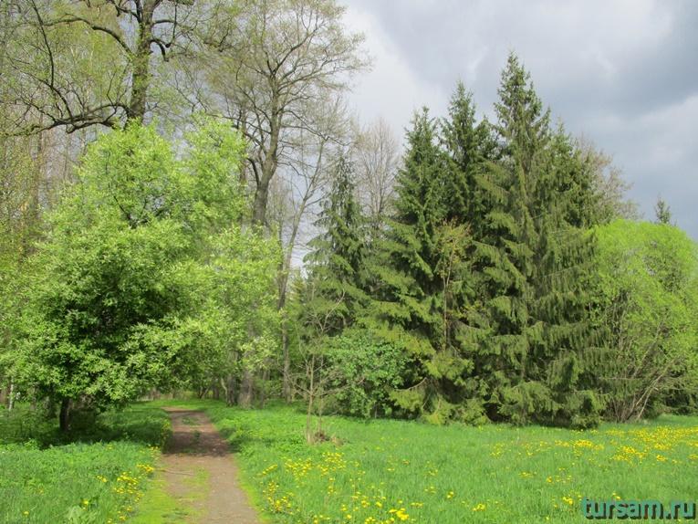 Фото на территории одного из ландшафтных парков рядом с Несвижским замком-11