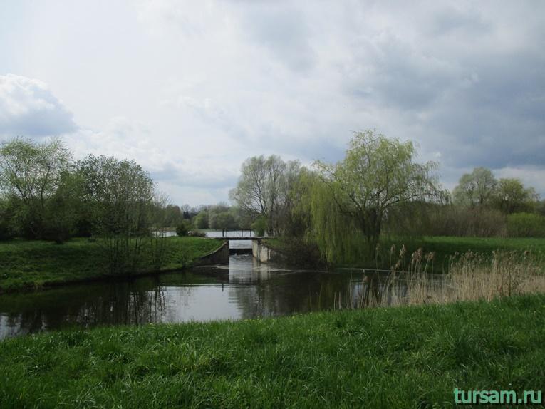 Фото на территории одного из ландшафтных парков рядом с Несвижским замком-15