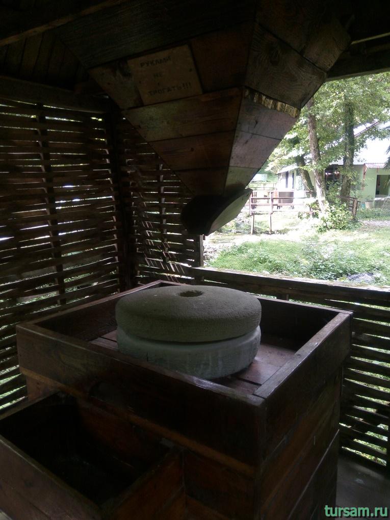 foto-podvorya-na-territorii-kafe-sauseryko-11