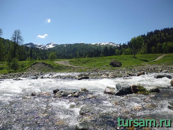 Горная речка на Альпийских лугах Абхазии