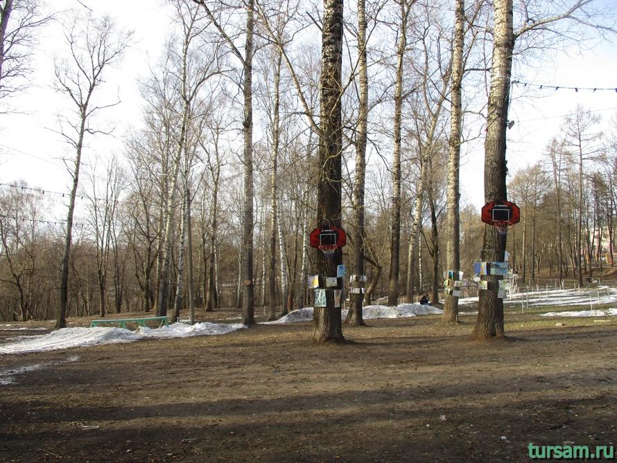 Городской парк в Истре-7
