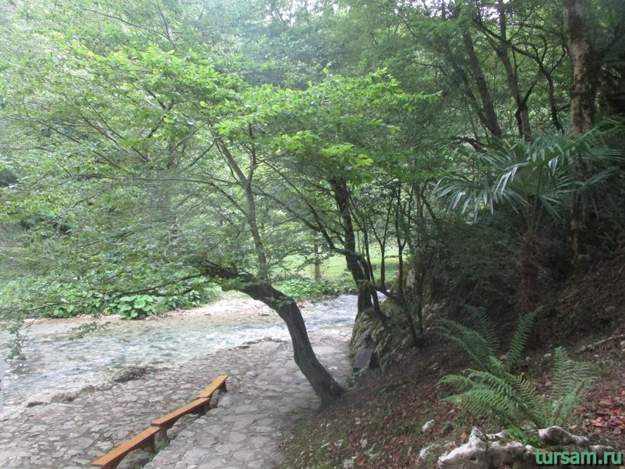 Историческое ущелье на реке Псырдсха-4