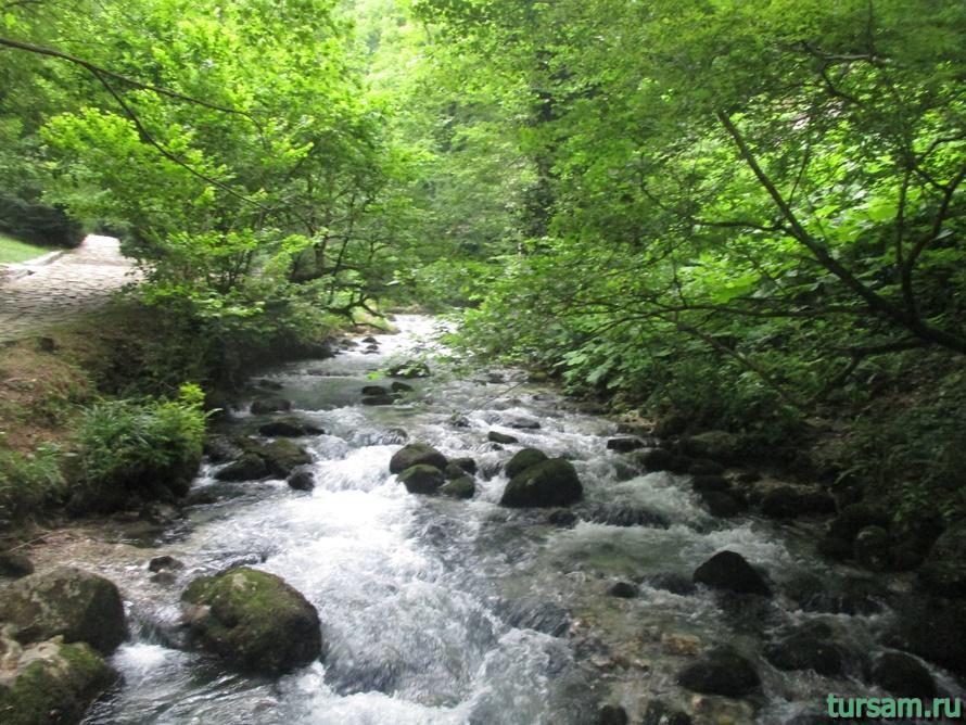 Историческое ущелье на реке Псырдсха-8
