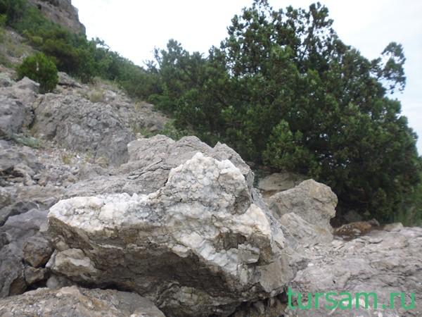 Камень на фоне кустарников. Гора Алчак-Кая. Крым. Судак.
