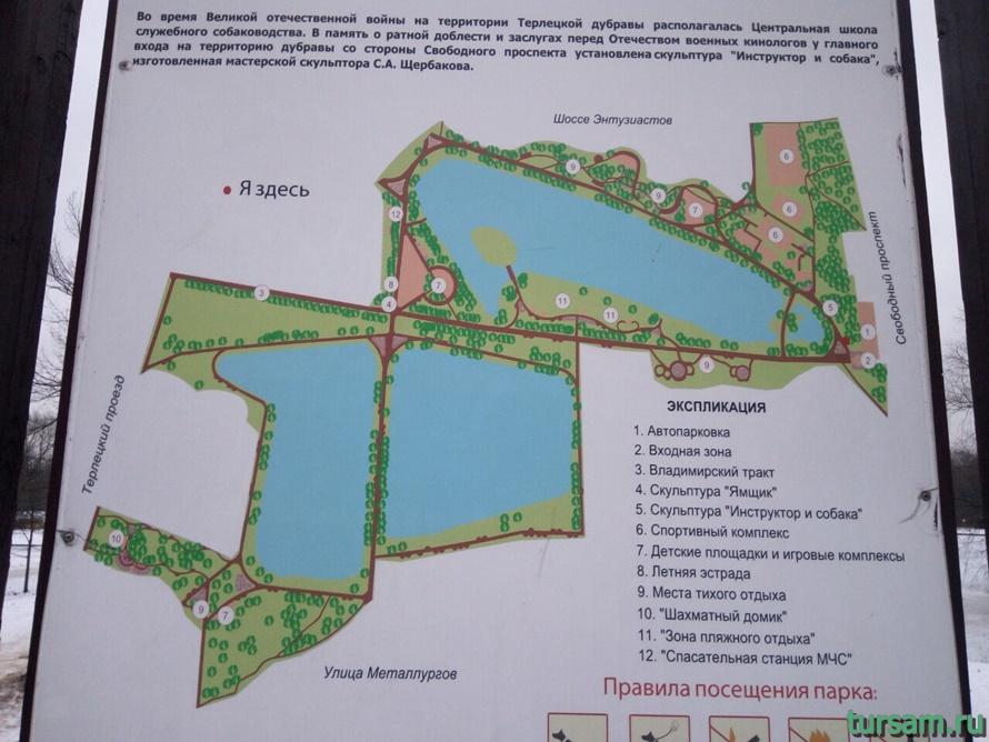 Карта Терлецкой Дубравы