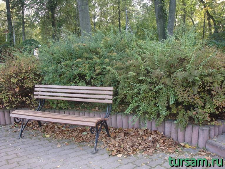 """Лавочка в малом розарии в парке """"Сокольники"""""""