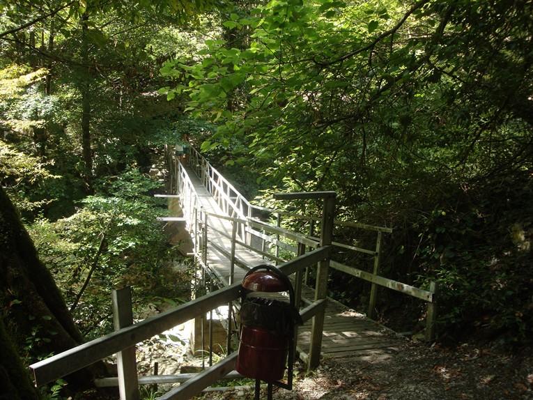 Мост на маршруте Агурское ущелье и водопады