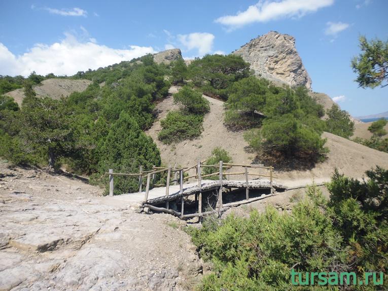 Мост на тропе Голицына на территории Ботанического заказника - Новый Свет
