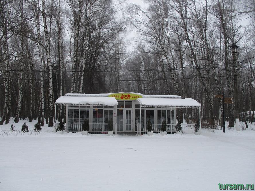 Парк Белоусова в Туле-29