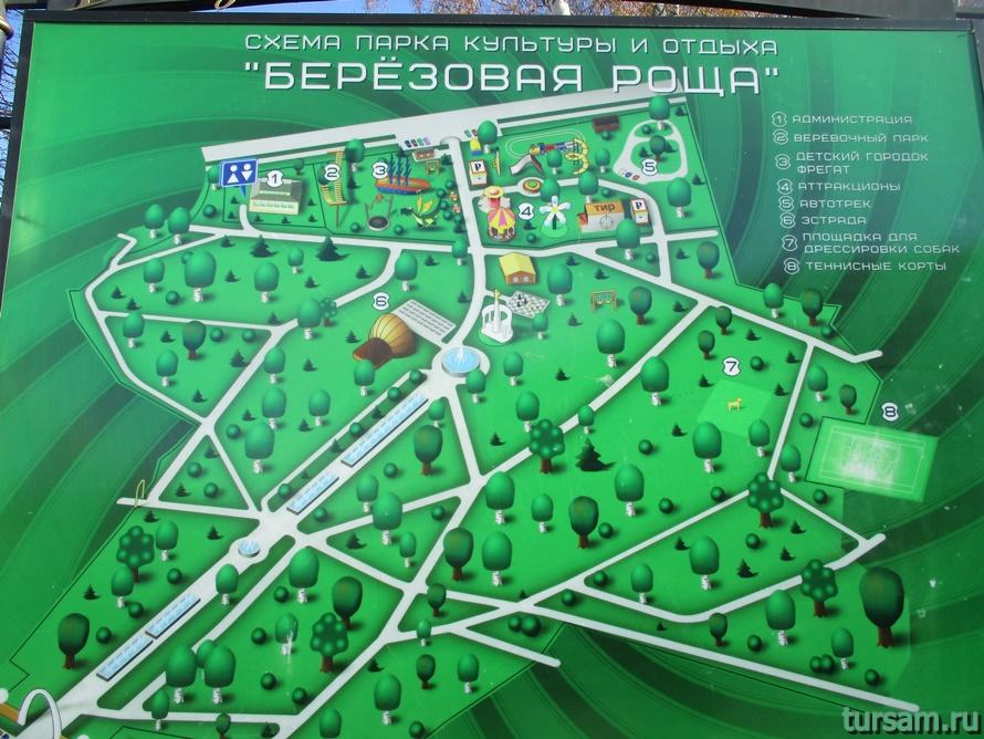 Парк Березовая роща в Дмитрове-1