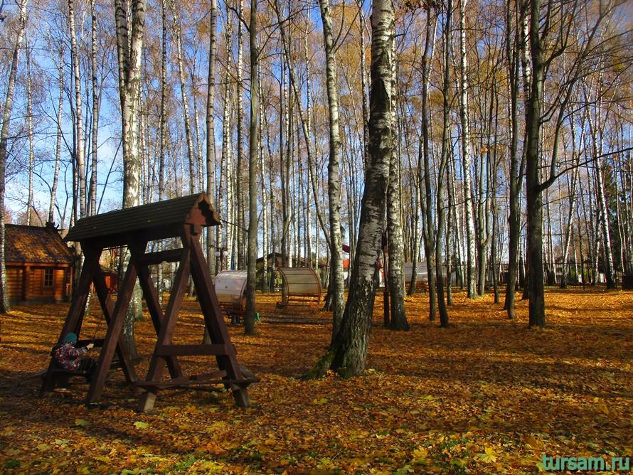 Парк Березовая роща в Дмитрове-12