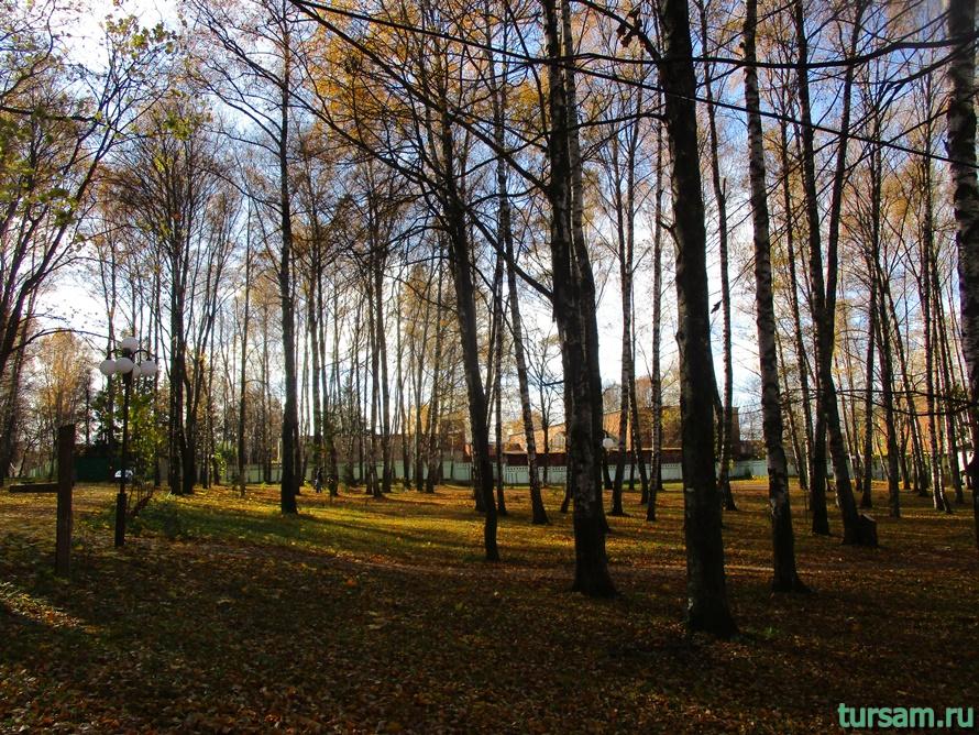Парк Березовая роща в Дмитрове-2