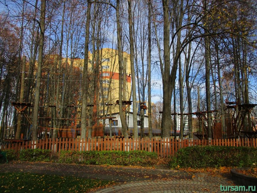 Парк Березовая роща в Дмитрове-23