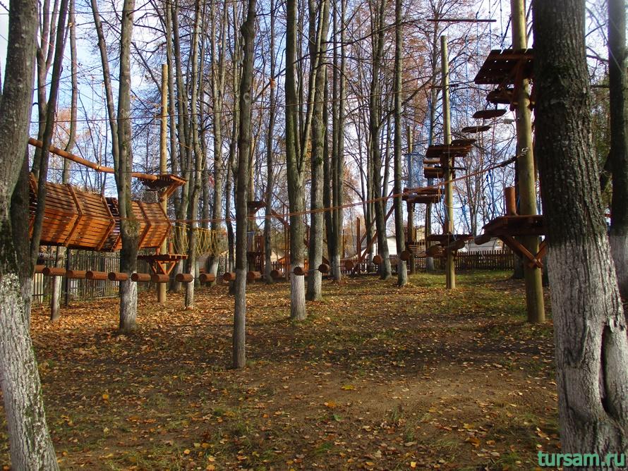 Парк Березовая роща в Дмитрове-24
