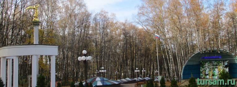 Парк Березовая роща в Дмитрове-27