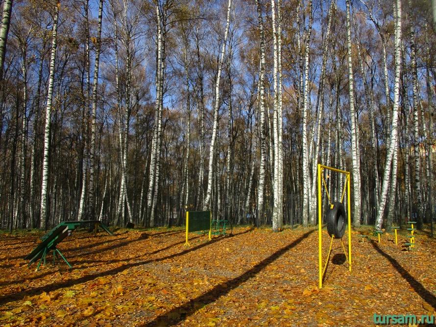 Парк Березовая роща в Дмитрове-7