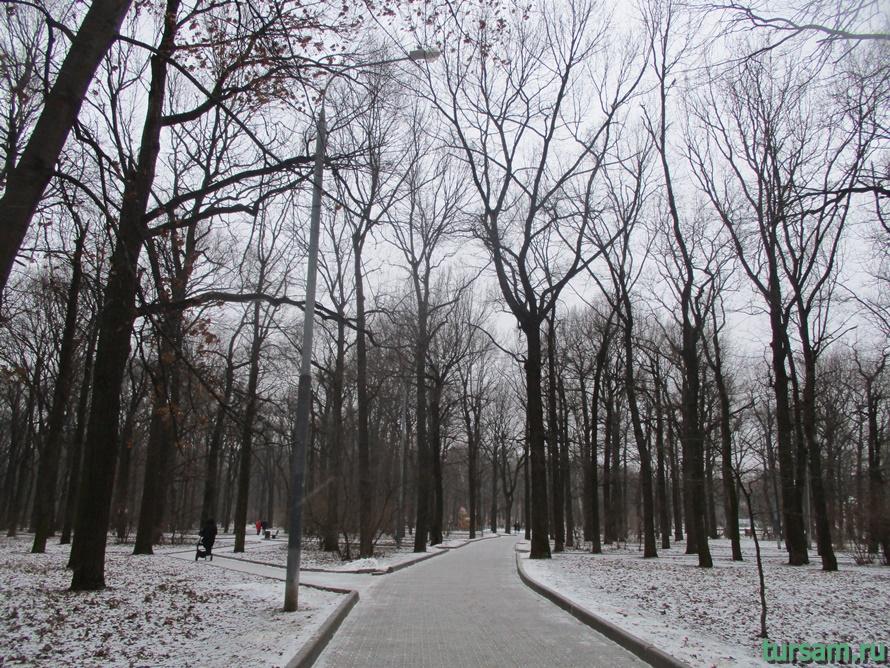 Парк Дубки в Москве-1