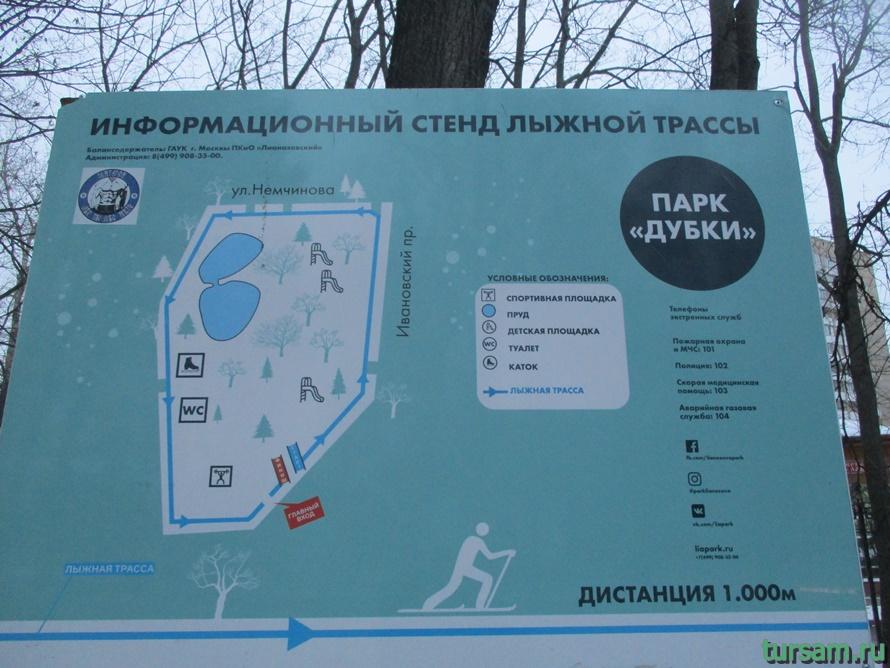 Парк Дубки в Москве-15