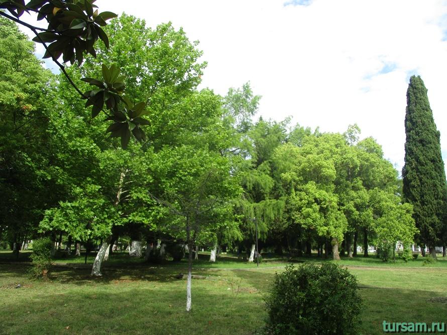Парк Гуда и Ута в Абхазии-1