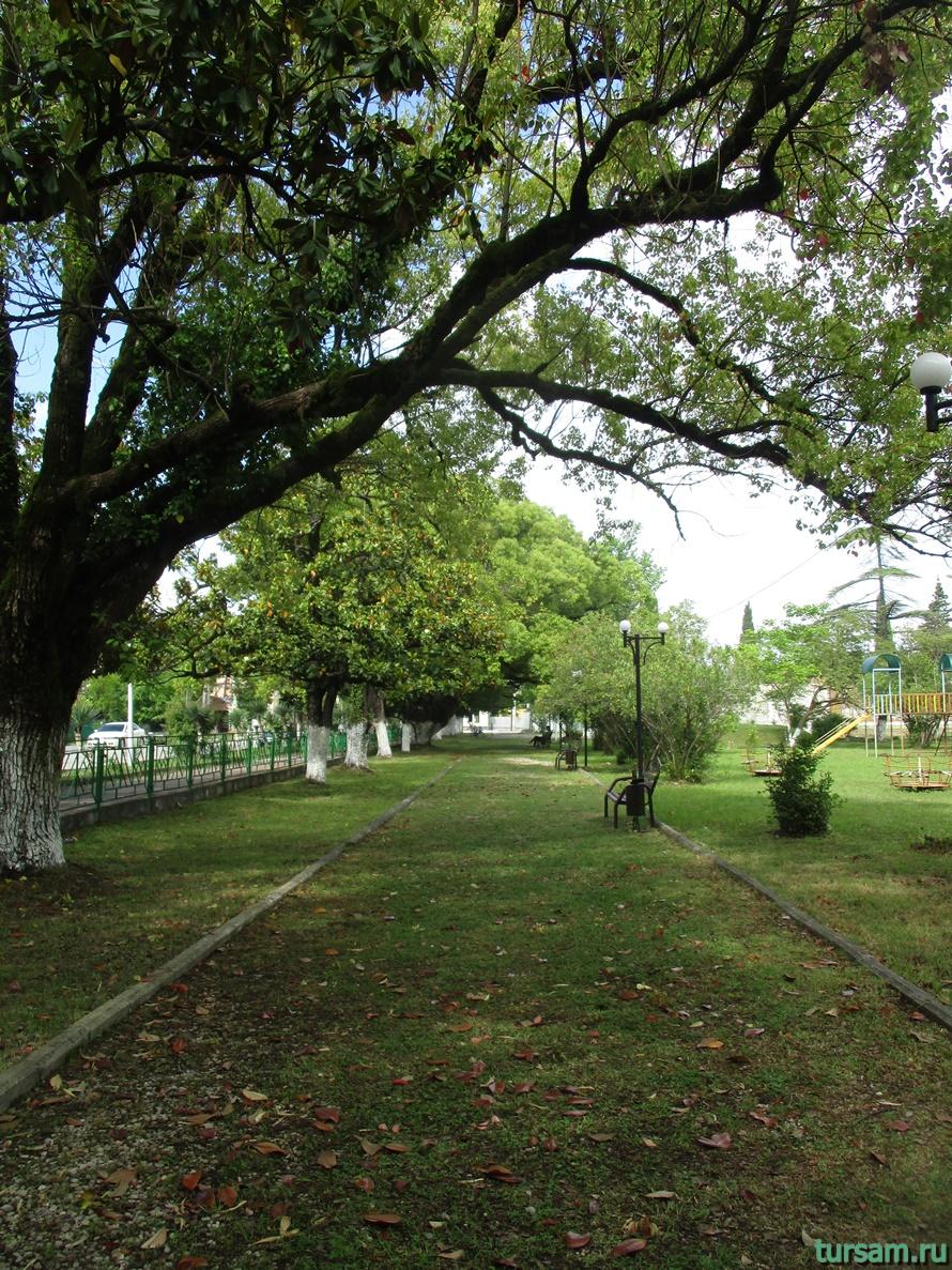 Парк Гуда и Ута в Абхазии-5