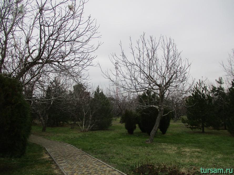 Парк Ореховая роща в Анапе-1