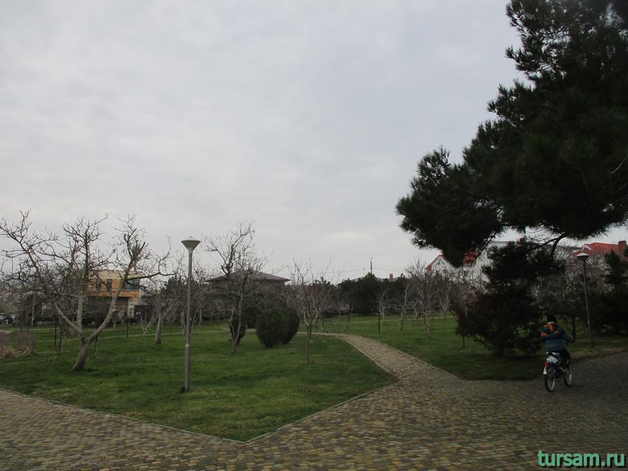 Парк Ореховая роща в Анапе-12