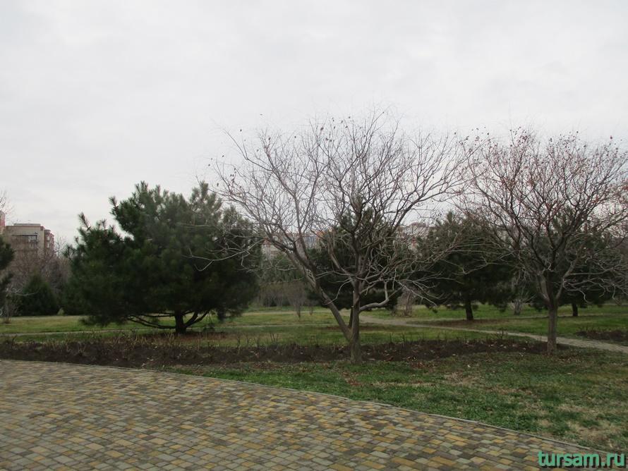 Парк Ореховая роща в Анапе-13