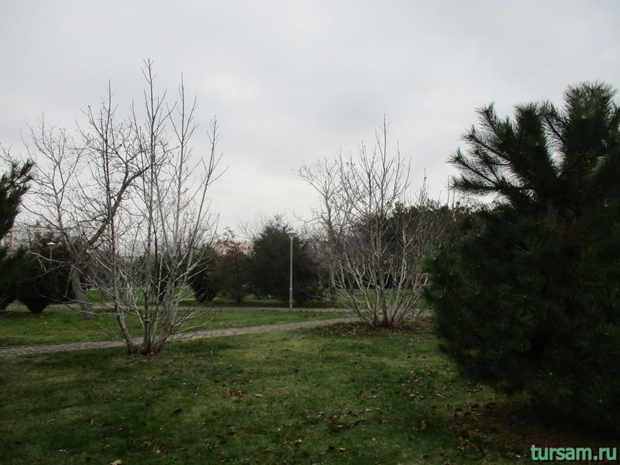 Парк Ореховая роща в Анапе-3