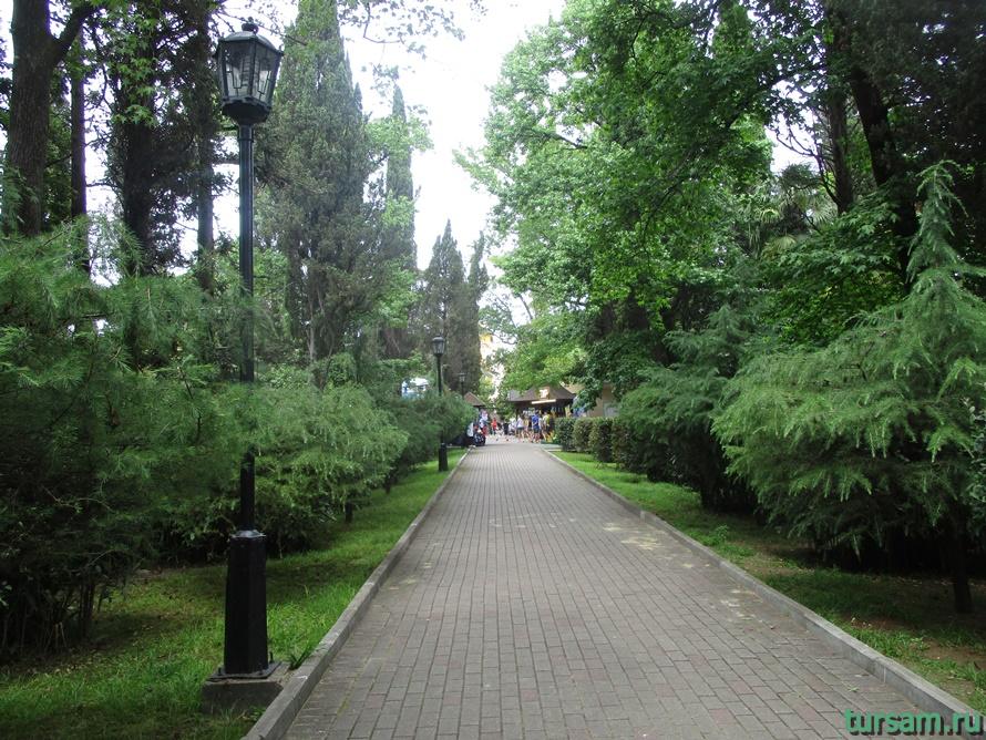 Парк Ривьера в Сочи-3