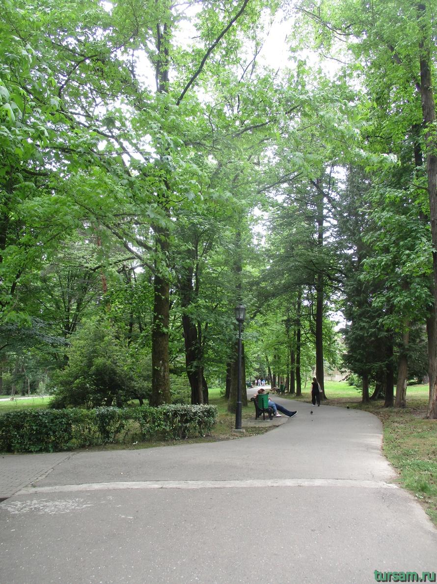 Парк Ривьера в Сочи-33
