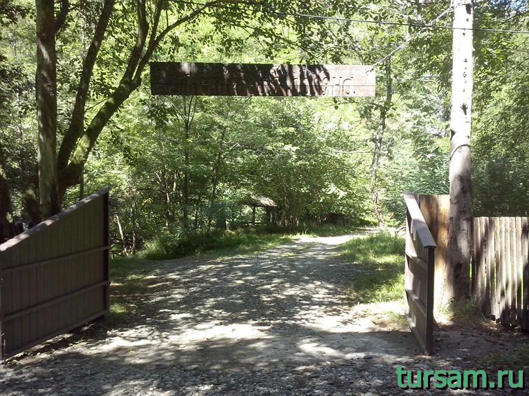 Пикниковая поляна по дороге на Агурские водопады