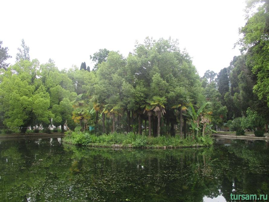 Приморский парк в Новом Афоне в Абхазии-12