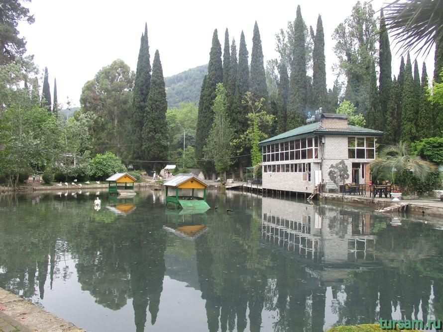 Приморский парк в Новом Афоне в Абхазии-21