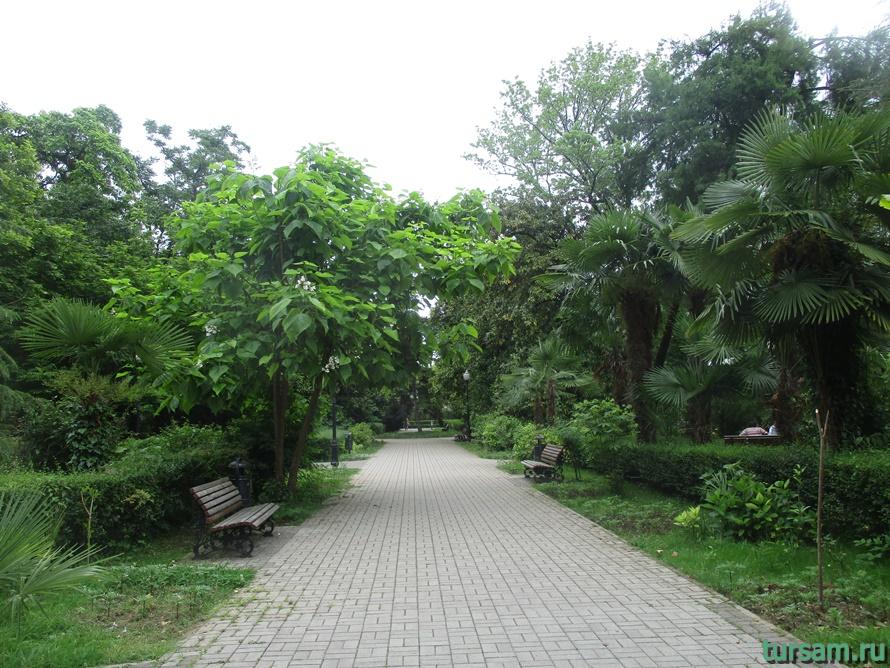 Приморский парк в Новом Афоне в Абхазии-25